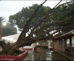 Implementa CEPCO operativo por lluvias fuertes en Oaxaca (1)