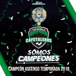 cafet campeon 3
