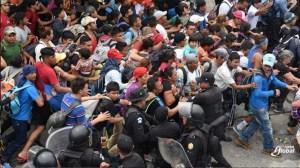 migrantes x