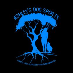 Ashley's Dog Sports