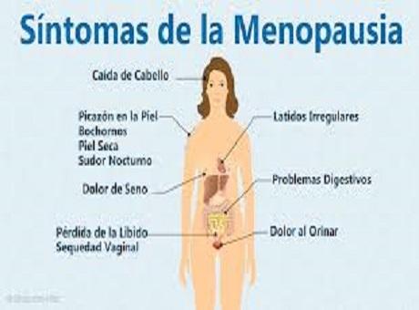 Menopausia: alternativas para atravesar esta etapa de la vida