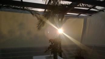 Die ersten Sonnenstrahlen nach der Nacht in der Laubhütte