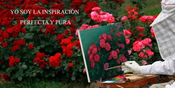 YO SOY LA INSPIRACIÓN PERFECTA Y PURA