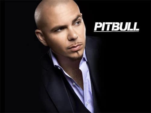 Pitbull en Costa Rica