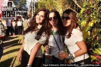 Tope Palmares 2014
