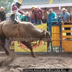 Extreme American Rodeo Costa Rica- 365