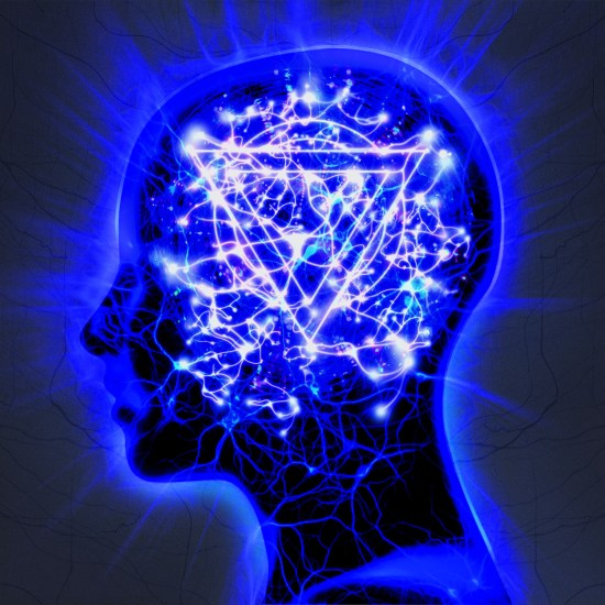 entershikari-themindsweep