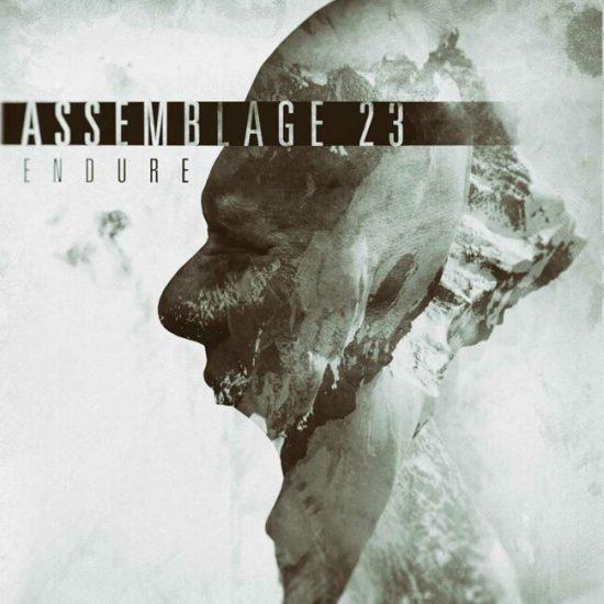 assemblage_23_-_endure