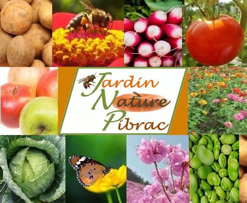 Les mécanismes de maturation des fruits 24/05/18