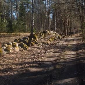 Pispalan pulteriaitaa Kuva A Parkkonen Vapriikin kuva-arkisto