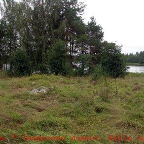 Sastamala Riihimäen kalmisto