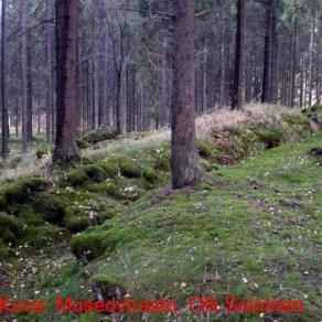 urjala_Kankaanpäänmäki 003