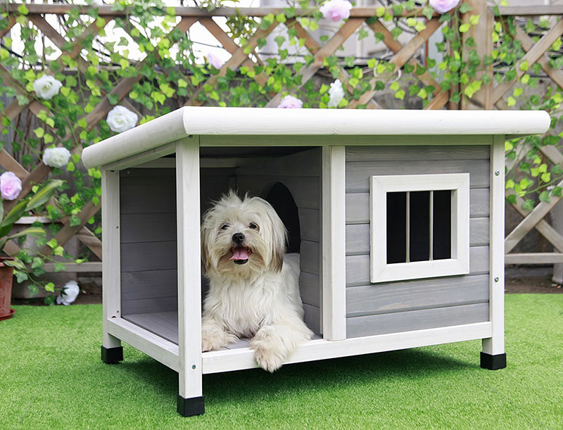 The Most Adorable Dog Houses Ever some of them you can buy online  Adorable Home