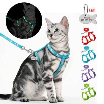 Cat's Luminous Harness And Leash Set Cats Collars, Harnesses & Leashes