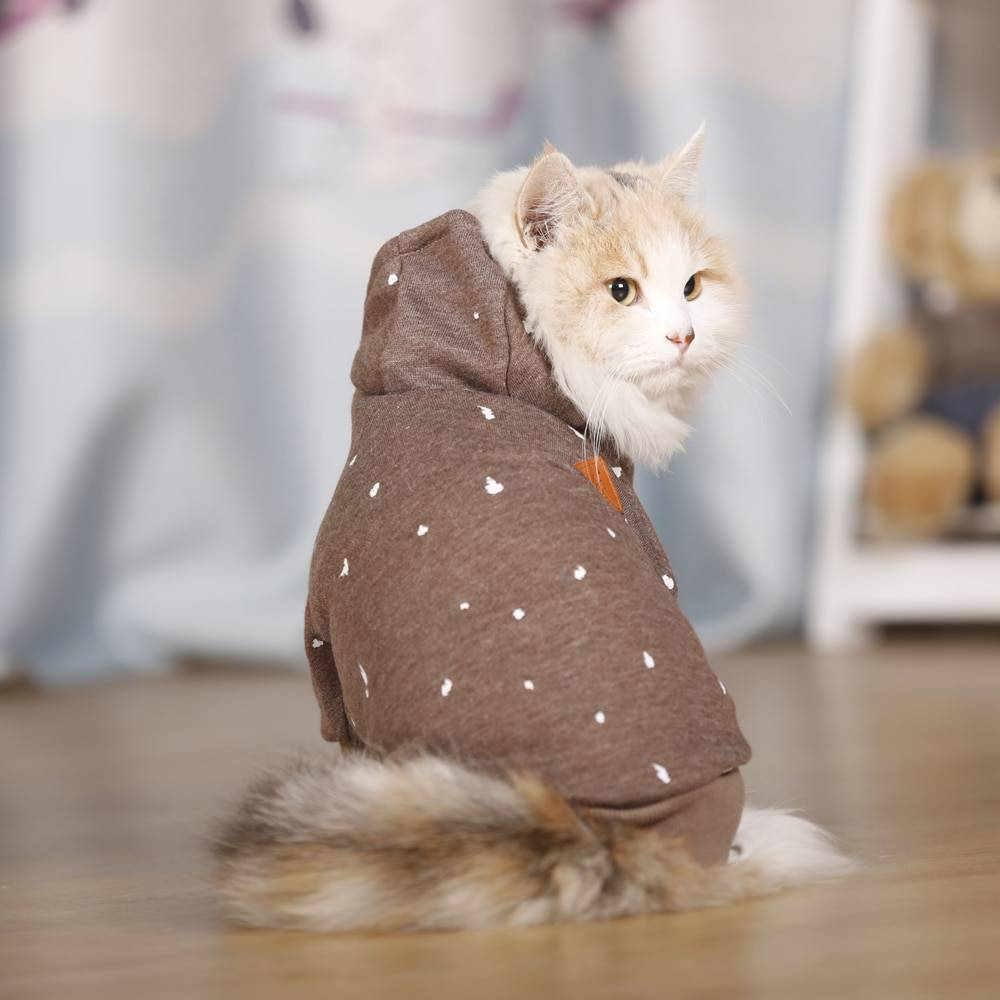 Warm Hoodies for Small Pet Cats Clothing
