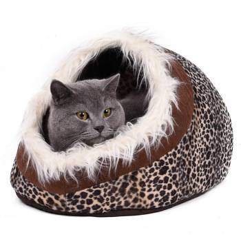 Elegant Warm Bed for Cats Beds Cats