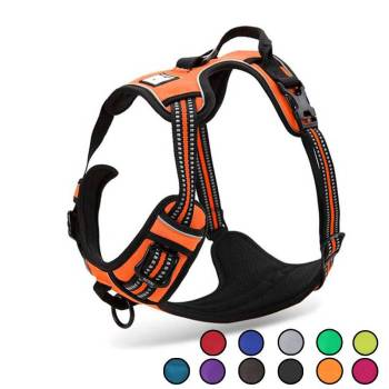 Dog's Reflective Nylon Harness Collars, Harnesses & Leashes Dogs