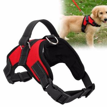 Soft Adjustable Dog Harness Collars, Harnesses & Leashes Dogs
