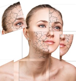 pin it how can i make makeup last longer on dry skin  [ 4500 x 3500 Pixel ]