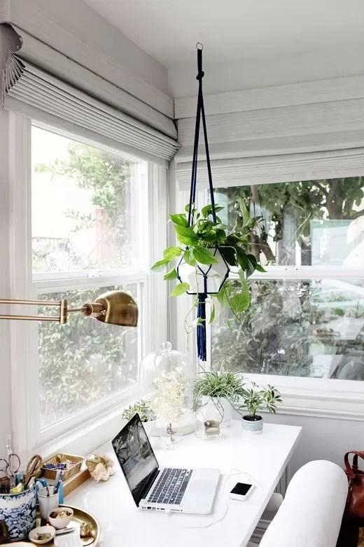 plantas no home office 7