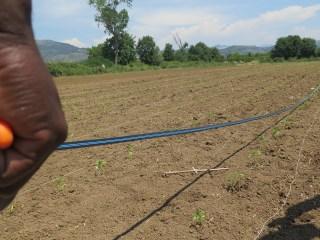 Incontri A Maiano – Progetto Lavoriamo Terre Migranti