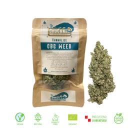 100% Organsko i Domaće! Mirisno bilje, Cannabis Sativa L sadrži 20% CBD-a sadrži