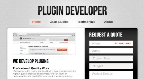 plugin-developer-zarada-na-internetu