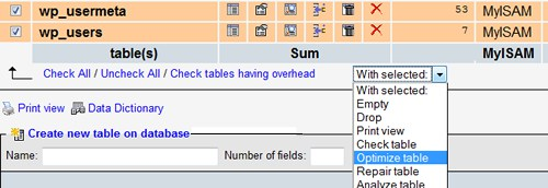 wordpress mysql base optimization