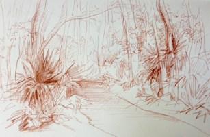 Adriana Burgos, sketchbook study of trees, Hannah Park, pen on paper