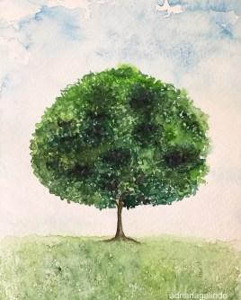 Árvore 26, tree 26, aquarela, watercolor,. Disponível / Available