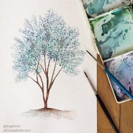 Eucalipto prateado, árvore 33 / Eucalyptus pulverulenta tree 33, watercolor, aquarela. Available