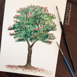 Spathodea / Tulipeira, árvore 36 / Tree 36, available / disponível