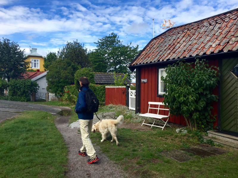 Sandhamn Murders, Viveca Sten, Mysteries