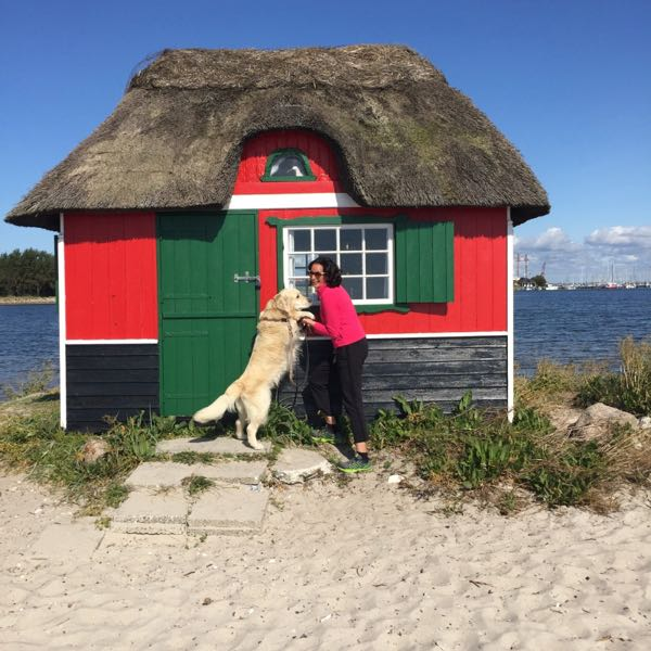 Books about Denmark Danish Cozy Mysteries Adriana Licio Aero Island Christmas Mystery