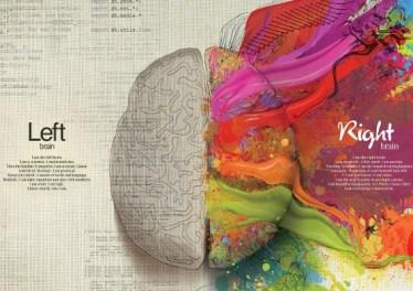 dezvoltarea cerebralaa copilului 2