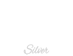Holy Business Logo white-Silver