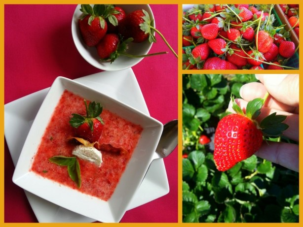 Chilled Strawberry Soup Sweet and Salty