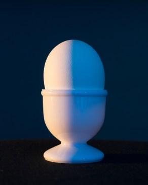 Bipolar Egg