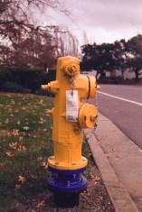 Kodak Colorplus 200 Film Sample Photos