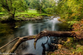 Long exposure in early autumn at the fallen tree over the River Conwy Betws-y-Coed north Wales, UK