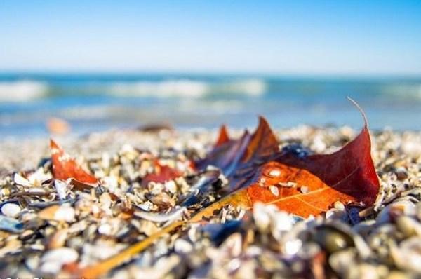 toamna-pe-plaja