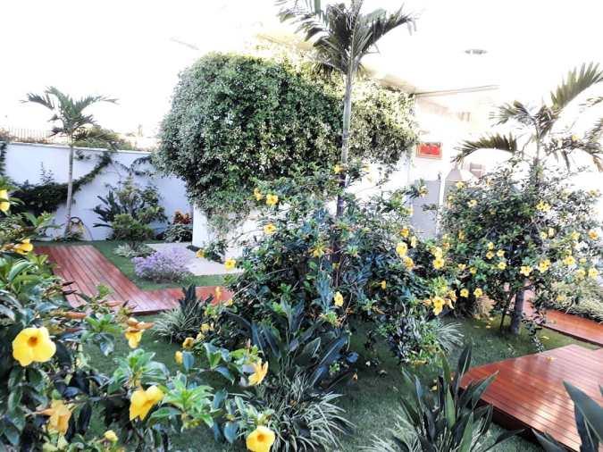 adriano-gronard-paisagismo-arquitetura-interiores-jardim-alamanda-flores
