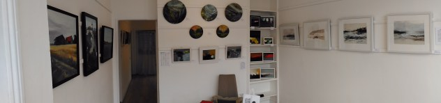 gallery-pana-1