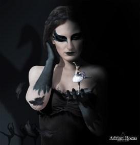 Fotografía Cisne Negro
