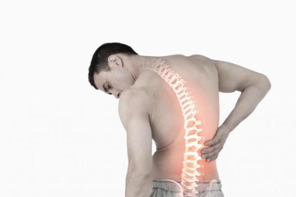Boli ale coloanei vertebrale