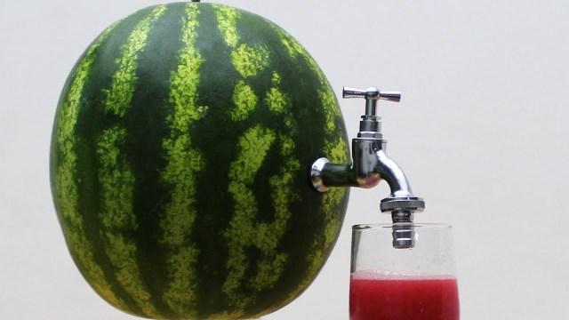 lubenița este fructul vedetă