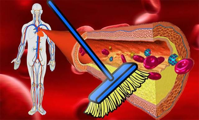 alimentele care curăţă arterele