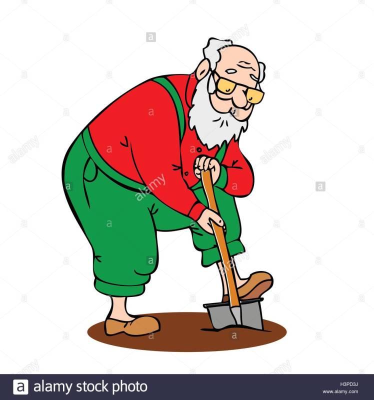gracioso-viejo-trabajando-en-el-jardin-abuelo-con-una-barba-larga-pala-excava-el-terreno-coloridos-dibujos-animados-illustrati-vectorial-h3pd3j