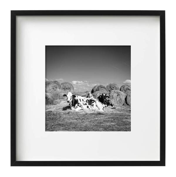 Cowgirls, France, Framed Monochrome Prints