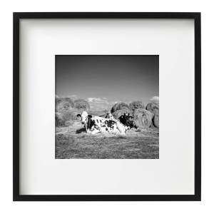 Cowgirls, France, Framed Monochrome Prints